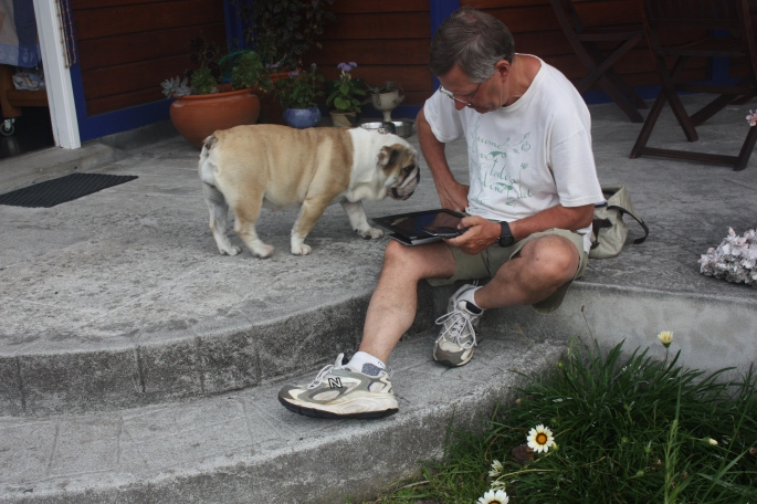 Reading Fuso with a Mexican dog