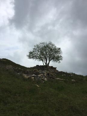 13. Monte Varagna