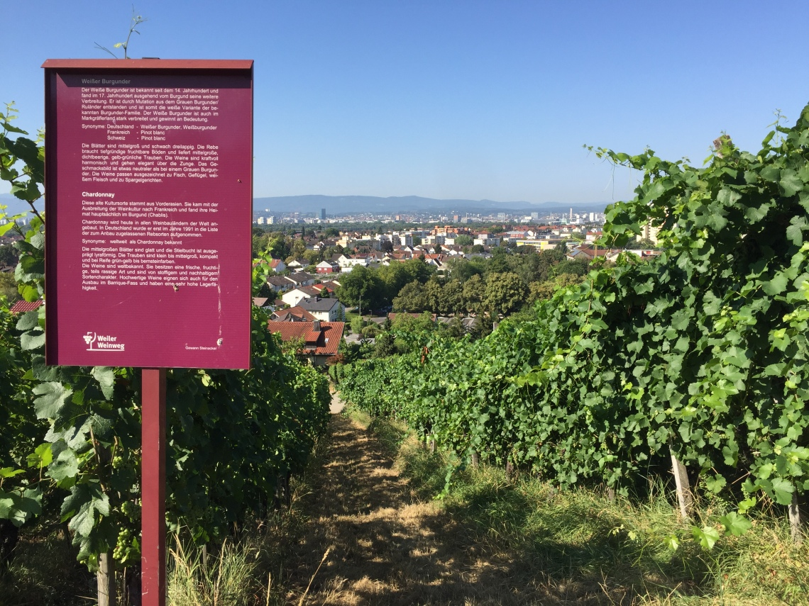 Il percorso d'arte della Rehberger-Weg - Le Vigne